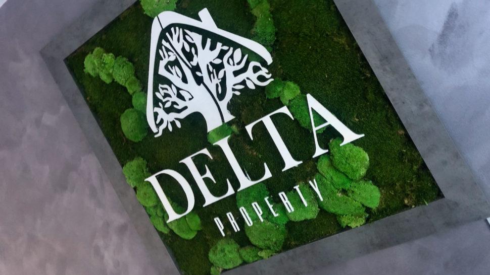 delta obraz